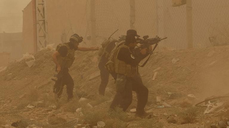 Ramadi, IS, Irak