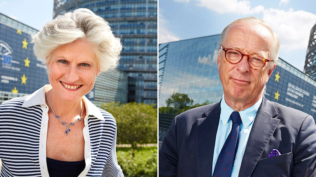 EU-parlamentarikerna Anna-Maria Corazza Bildt och Gunnar Hökmark. Foto: Fredrik Persson/TT.