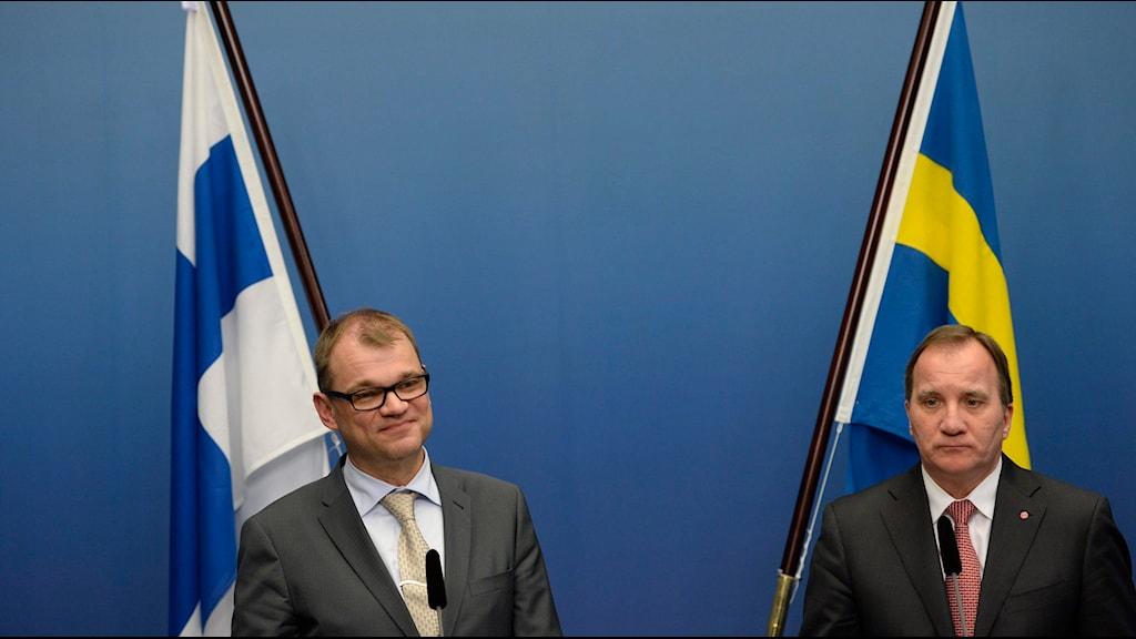 """""""Vi ser försvarssamarbetet som väldigt viktigt"""", säger Stefan Löfven. Foto: Jessica Gow/ TT"""