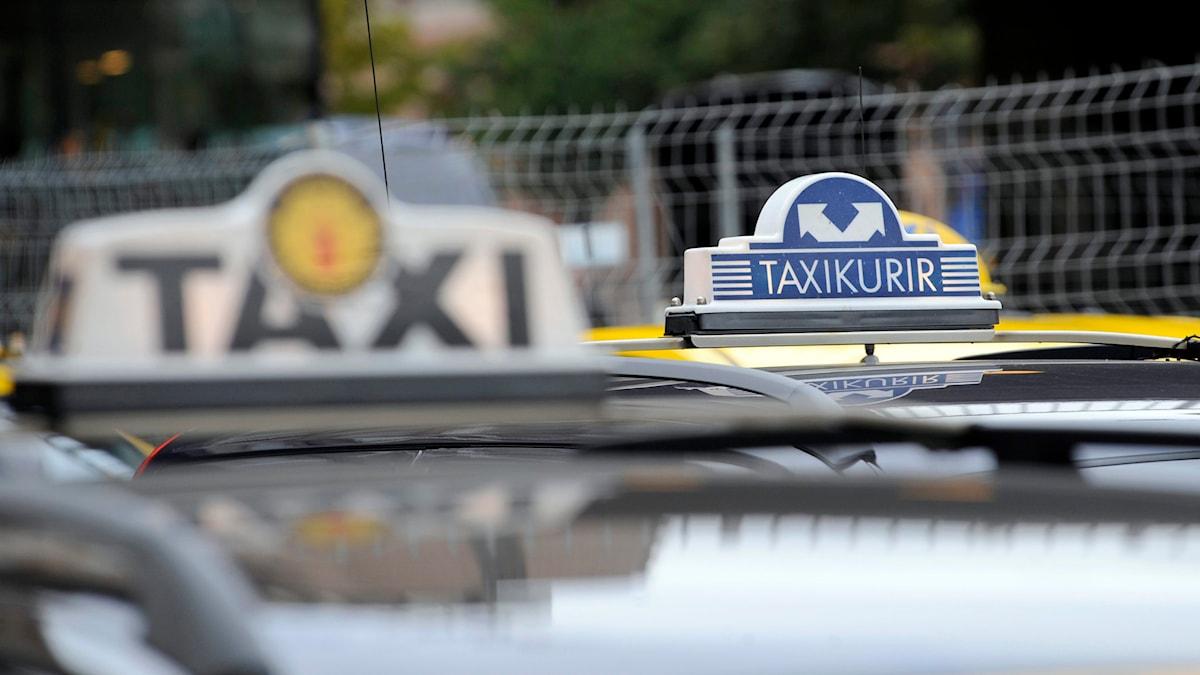 Taxibilar Foto: Bertil Ericson/TT