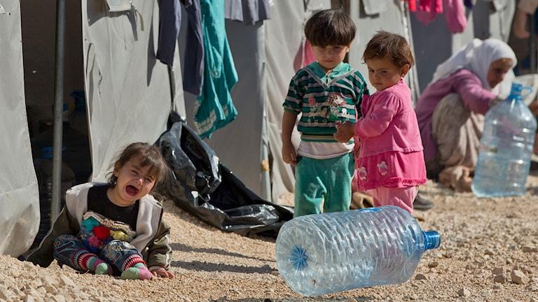 Flyktingar i Kobane vid turkisk-syriska gränsen. Foto: Vadim Ghirda/TT