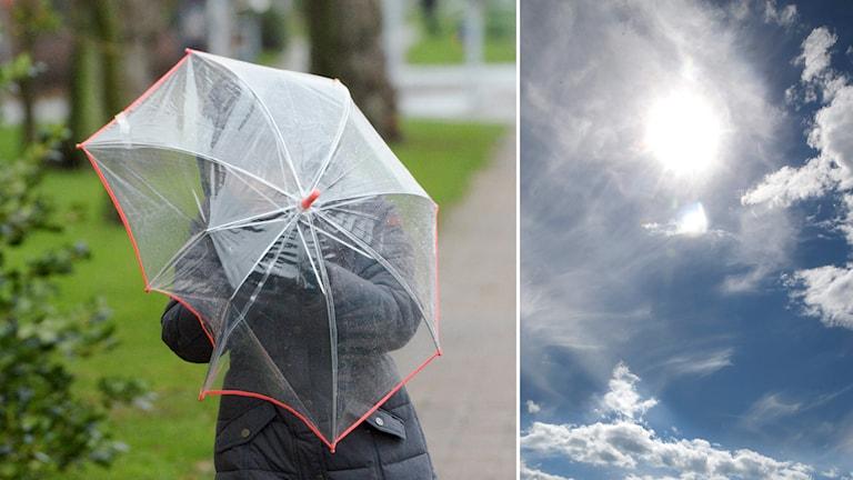 Person med paraply. Foto: Vidar Ruud/TT