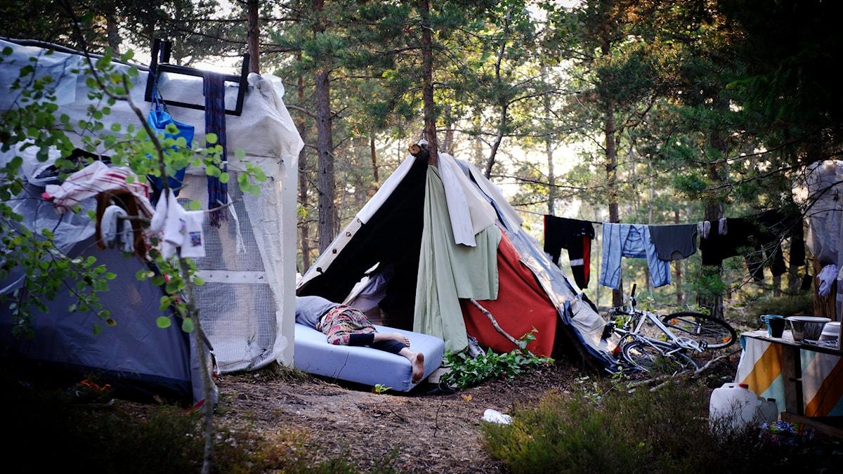 Tältläger Foto: Annika Af Klercker/TT