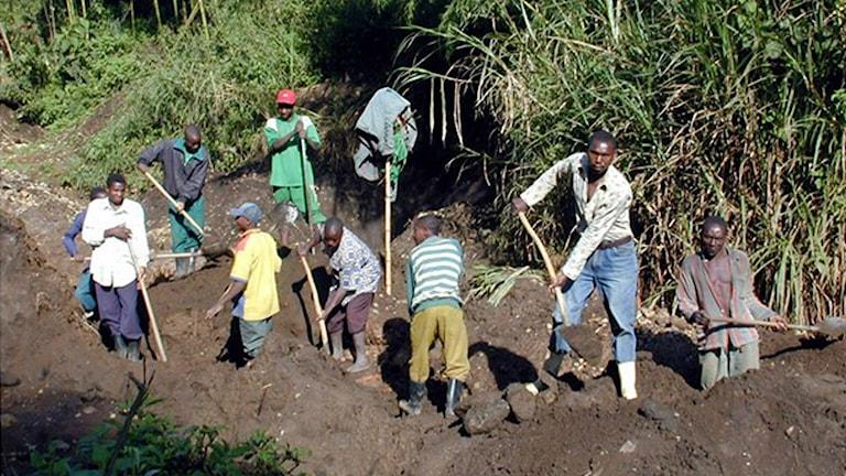 Kongo, konfliktmineraler, coltan