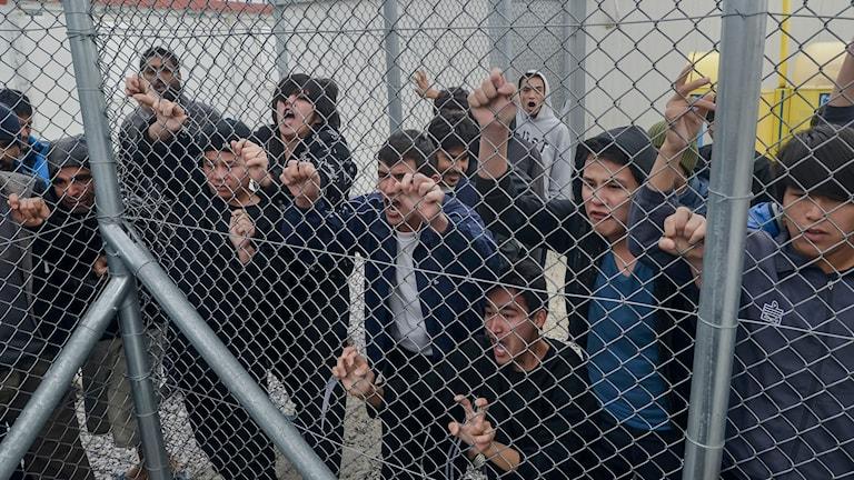 Flyktingar bakom stängsel Foto: Nikos Halkiopoulos/TT