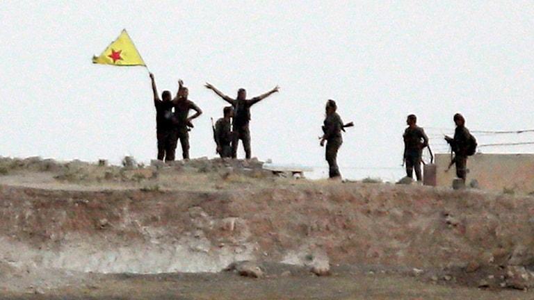 YPG krigare i Syrien Foto: Lefteris Pitarakis/TT