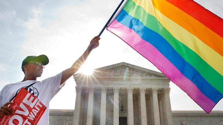 Man med regnbågsflagga. Foto: Jacquelyn Martin/TT