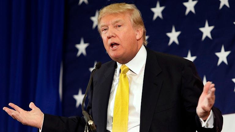 Donald Trump Foto: Jim Cole/TT