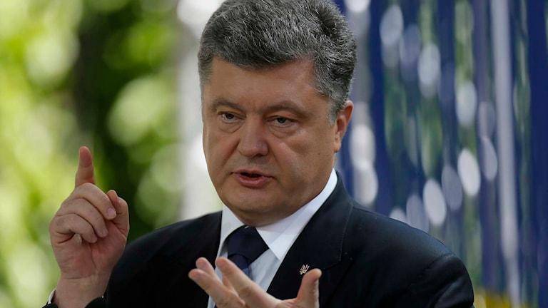 Ukrainas president Petro Porosjenko. Foto: Sergei Chuzavkov/TT.