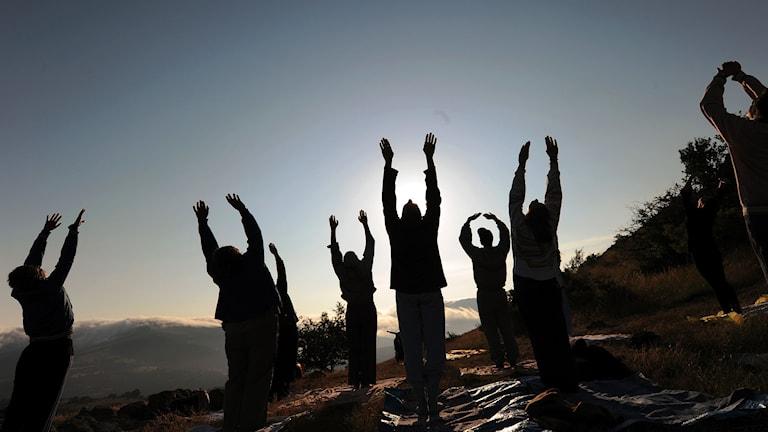 Människor som yogar. Foto: Robert Atanasovski/TT