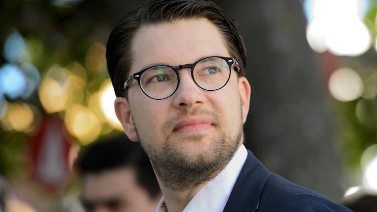 Sverigedemokraternas partiledare Jimmie Åkesson. Foto: Henrik Mongomery/TT