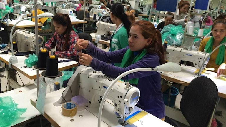 På den här textilfabriken som gör trosor åt Marks & Spencer finns 310 arbetare. Foto: Johan Bergendorff / Sveriges Radio