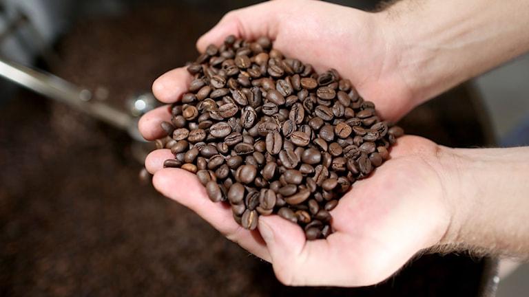 Nu får idkarna skylta med, till exempel, ekologiskt kaffe. Foto: Joe Raedle/TT