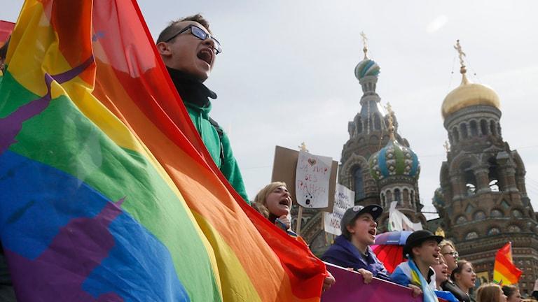 Aktivister för homosexuellas rättigheter i St. Petersburg, den 1 maj i år. Foto: Dmitry Lovetsky/TT