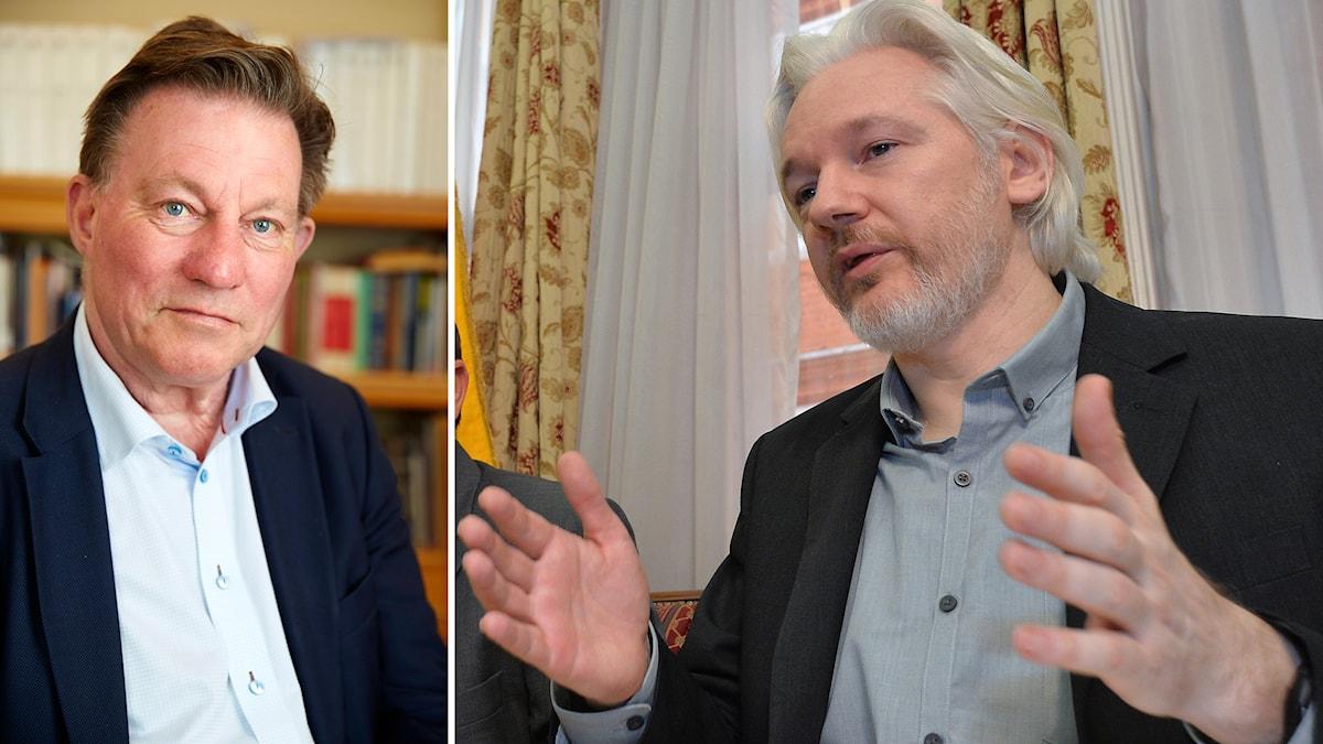 Claes Borgström Julian Assange