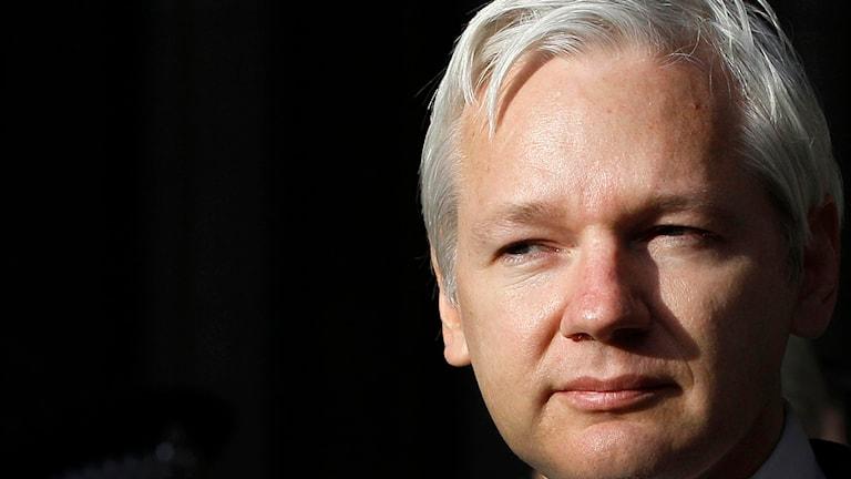 Julian Assange. Foto: Kirsty Wigglesworth/TT.
