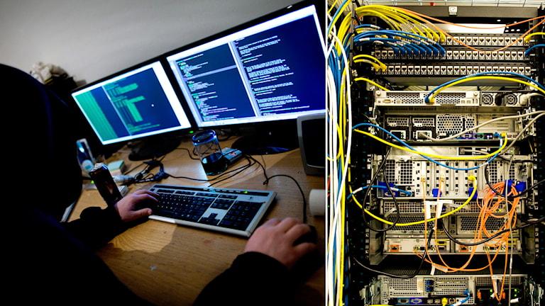 Dataintrång och datakablar. Thomas Winje Øijord / Lars Pehrson / TT