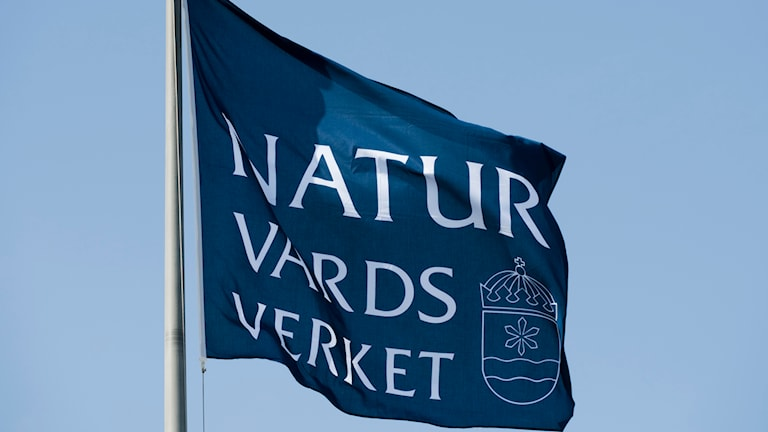 Naturvårdsverkets flagga. Foto. Henrik Montgomery/TT.