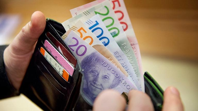 Sveriges nya sedlar. Foto: Jessica Gow / TT