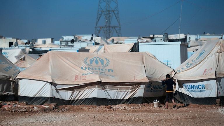 Tältstad med UNHCR:s emblem på tälttaken