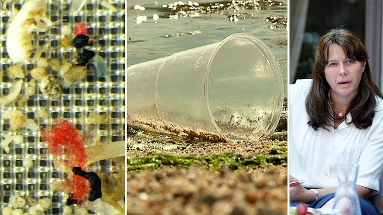 Mikroplast, skräp på stranden och Åsa Romson
