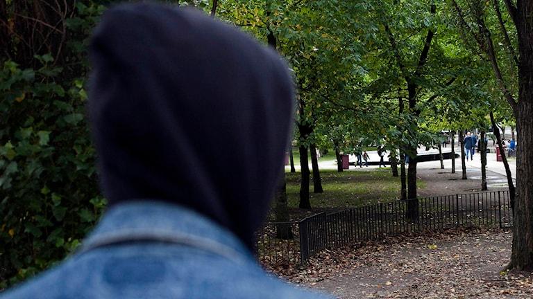 En tonåring med huvtröja i en park. Foto: Robin Haldert/TT.