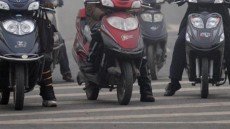 Mopeder, Kina. Foto: FP / TT