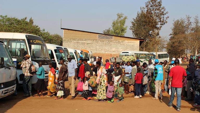 Flyktingar från Burundi som anlänt till flyktingläger i östra Rwanda.