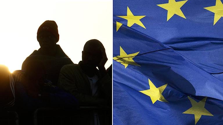 Migranter och EU-flagga
