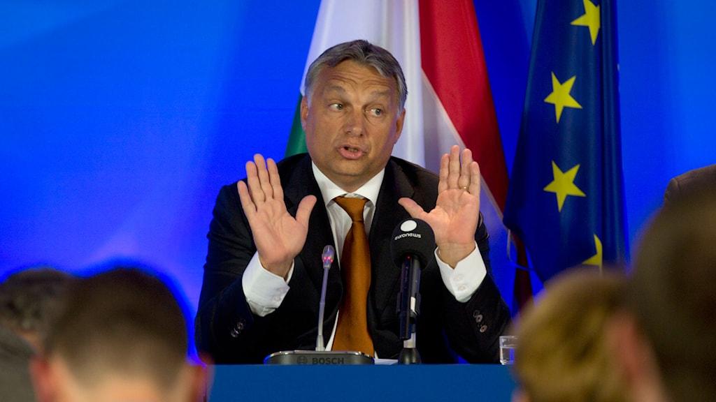 Victor Orbán vid presskonferens i Bryssel. Foto: Viginia Mayo/AP/TT