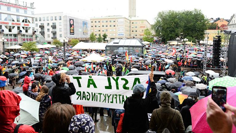 Människor samlas med paraplyer i regnet på Medborgarplatsen i Stockholm för att delta i en manifestation till stöd för flyktingar. Foto: Maja Suslin/TT