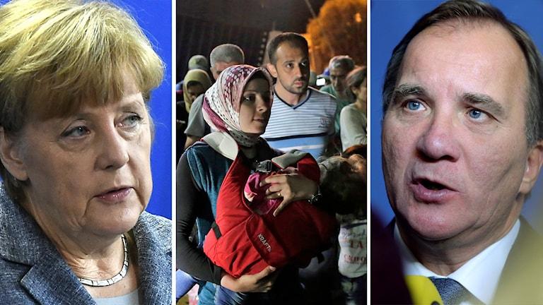 Delad bild: Angela Merkel, flyktingar samt Stefan Löfven. Foto: TT.