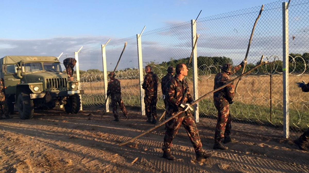 Ungern flyktingkrisen gräns taggtråd