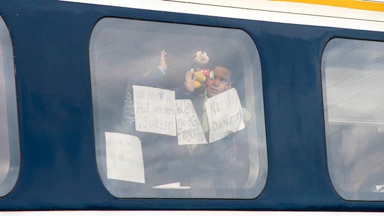 Flyktingar ombord på tåg som står stilla i Rödby. Foto: Dan Åsen Hansen/TT