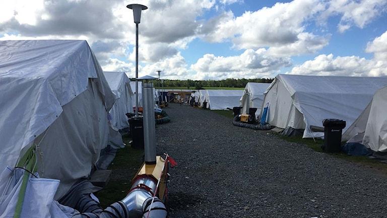 Tält i flyktinganläggningen i Halberstadt. Foto: Daniela Marquardt/Sveriges Radio.