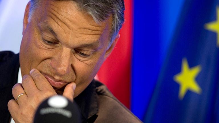 Ungerns premiärminister Viktor Orban. Foto: Virginia Mayo/AP.