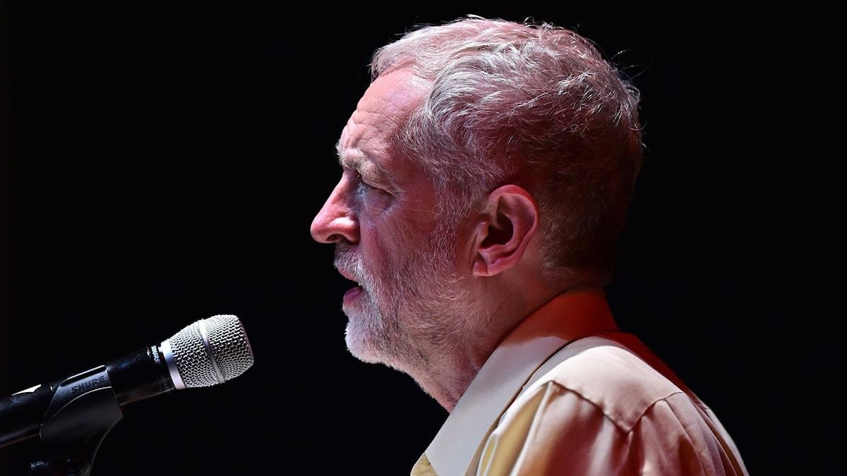 Jeremy Corbyn spås bli Labourpartiets nye partiledare. Foto: Ben Stansall/TT.