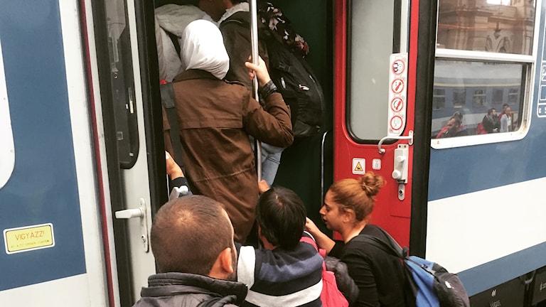 Människor tränger sig på tåget mot Györ nära gränsen till Österrike. Foto: Firas Jonblat/Sveriges Radio.