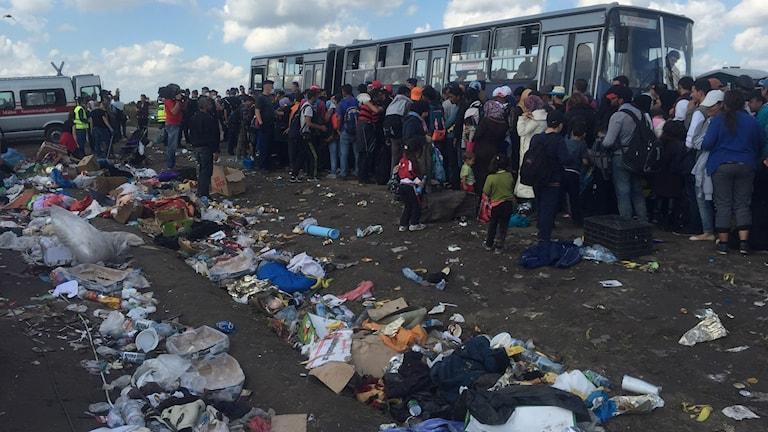 Människor står och köar till bussar för att komma vidare till andra läger. Foto: Firas Jonblat/Sveriges Radio.