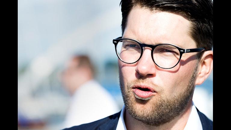 Sverigedemokraternas partiledare Jimmie Åkesson. Foto: Rickard Nilsson/TT.