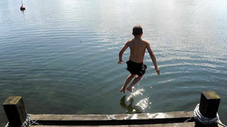 Pojke hoppar i sjö. Foto: Hasse Holmberg/TT.