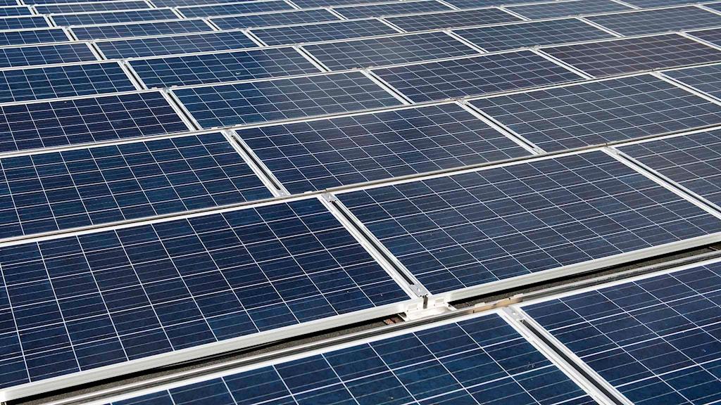 Solceller på tak. Foto: Fredrik Sandberg/TT.