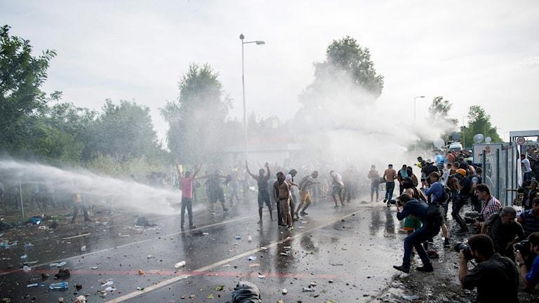 Ungersk polis sprutar vatten med hjälp av vattenkanoner på flyktingarna vid gränsen. Foto: Tamas Soki/TT.