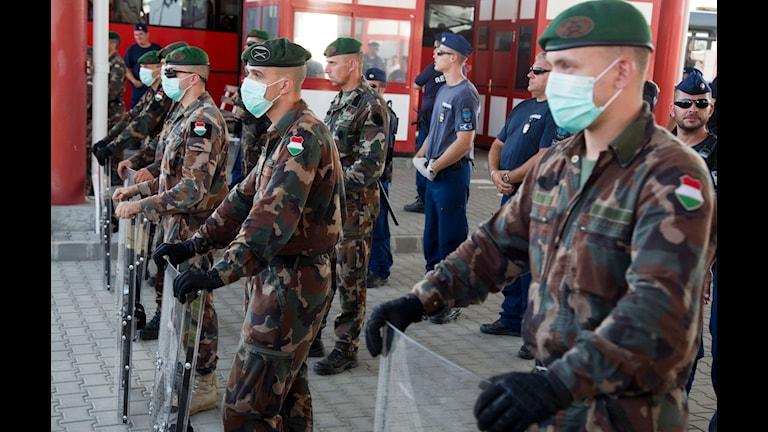 Ungersk militär vid landets gräns. Foto: Darko Bandic/AP