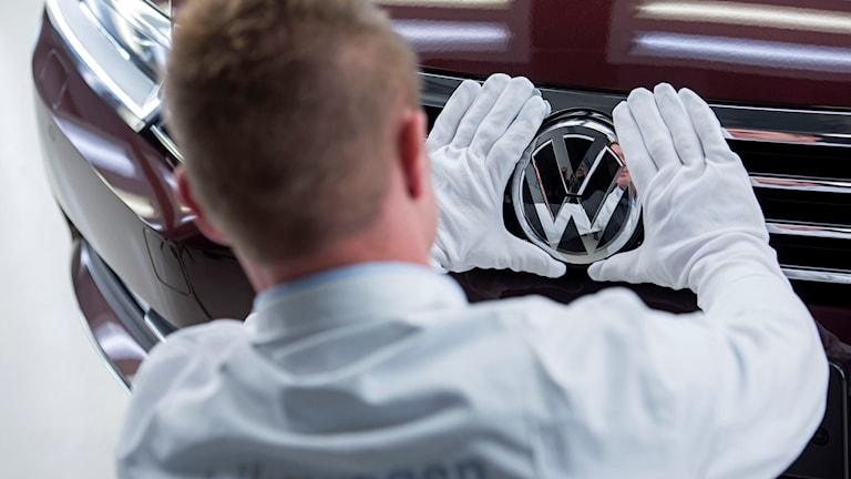 En person ordnar det sista på en Volkswagen-bil i samband med en pressvisning vid en av företagets fabriker i Tyskland. Foto: Jens Meyer/TT