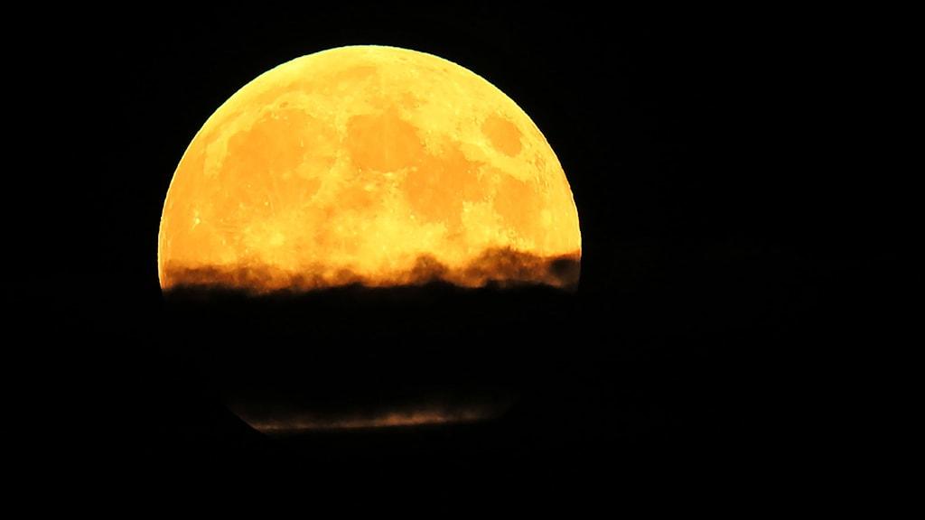 Supermåne från 2014 Foto: Chris Pietsch/AP