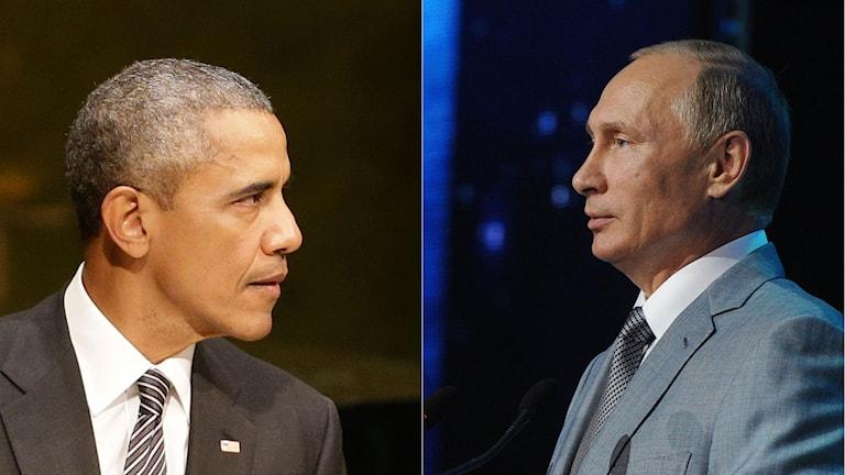 USA:s president Bracka Obama håller tal, liksom hans ryske kollega Vladimir Putin. Foto: TT. Montage: Sveriges Radio.