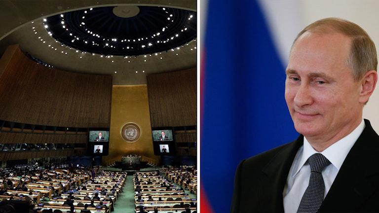 Vladimir Putin, FN