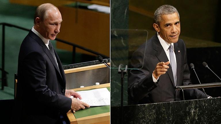 Obama och Putin ska samlas för ett privat möte under kvällen. Foto: Mary Altaffer, Seth Wenig/ TT
