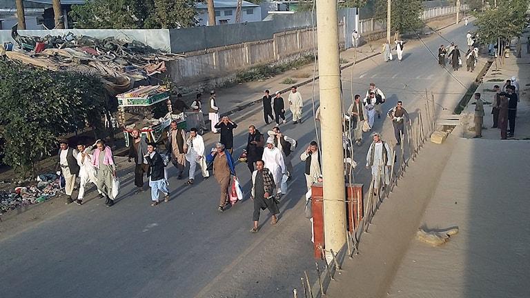 Fritagna talibanska fångar på en gata i Kunduz, Afganistan. Foto:Hekmat Aimaq/AP/TT